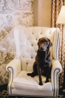 Madison Hotel DC Bridal